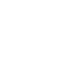 line icon of bicycle